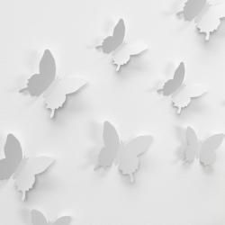 butterfly-1049687_1280