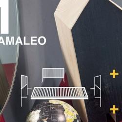 Camaleo_01_NEWS-1