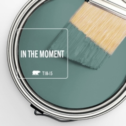 In-the-Moment-Brush